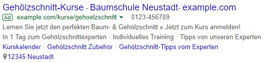 Voice-Search - informationsorientierte Suchanfragen